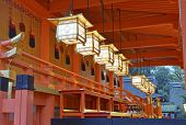 image of dory  - Richly colored Fushimi Inari Taisha Shrine - JPG