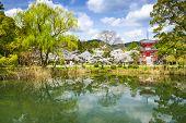 Kyoto, Japan at Daikaku-ji Temple.