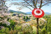 Yoshinoyama, Nara, Japan during the spring season.