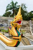 Golden Naga Snake On Entrance Of Buddhist Temple