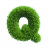 Letter q of green grass