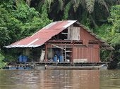 stock photo of rainforest  - Floating fisherman - JPG