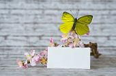foto of yellow orchid  - Close up Small Empty Greeting Card In Front of Orchid Flowers with Yellow Green Butterfly on Top of the Table with Abstract Background - JPG