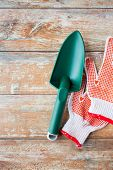stock photo of trowel  - gardening and planting concept  - JPG