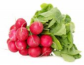 picture of radish  - bunch of radishes isolated on a white background - JPG