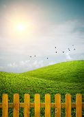 stock photo of grass bird  - Beautiful grass hills with birds and a wooden fence under sunny weather - JPG