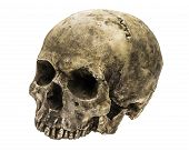 stock photo of cranium  - Old human skull isolated on white background - JPG
