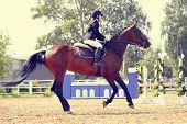 foto of horse-breeding  - The sportswoman on a sports red horse at competitions - JPG