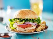 picture of chicken  - grilled chicken sandwich shot from eye level - JPG