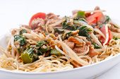image of chow  - healthy home made chicken chow mein or chow mien with crispy noodles - JPG