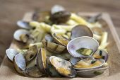 image of clam  - pasta with veraci clams and fried zucchini in pan