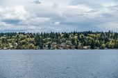 picture of pacific islands  - View of Mercer Island residences in the Spring - JPG
