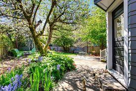 foto of greenery  - Amazing back yard with an abundance of greenery and flowers - JPG