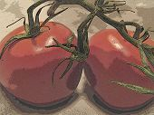 Abstract Tomatoes