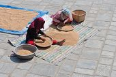 Two Women Separating Grain