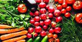 Fresh Vegetables. Colorful Vegetables Background. Healthy Vegetable . Assortment Of Fresh Vegetables poster