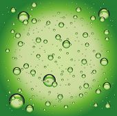 green water bubbles on a green background