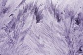 frost violet pattern