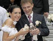 Weiße Tauben in Händen der sweetharts