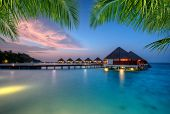 Water villas in lagoon, Maldives resort island in sunset. Detail of palm leaves on foreground. Vacat poster