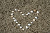 Heart Of Shells At The Beach