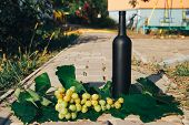 Bottle Of Wine Stands Against The Green Leaves Of The Vineyard. Vine. Natural Drink, Private Vineyar poster