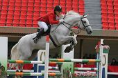 The Horseman Will Start In Competitions On Jumps Through Obstacles