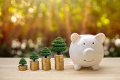 Piggy Bank, Tree And Coin Bars On A Wooden Table In Sunlight Background. - Saving Money Concept, Sav poster