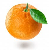 Orange fruit with orange leaf isolated on white background. File contains clipping path. poster