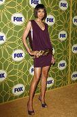 LOS ANGELES - JAN 8:  Tamara Taylor at the FOX All Star Winter TCA Party at Castle Green on January 8, 2012 in Pasadena, California.