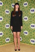 LOS ANGELES - JAN 8:  Hannah Simone at the FOX All Star Winter TCA Party at Castle Green on January 8, 2012 in Pasadena, California.