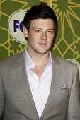 LOS ANGELES - JAN 8:  Cory Monteith at the FOX All Star Winter TCA Party at Castle Green on January