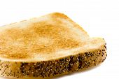 Close-Up Picture Of A Toasted Bread Isolated On White Background