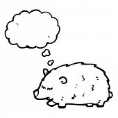 wombat with thought bubble cartoon