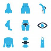Physique Icons Colored Set With Belly, Joint, Butt And Other Slim Elements. Isolated Vector Illustra poster