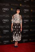 LOS ANGELES - JAN 14:  Lena Headey arrives at  the BAFTA Award Season Tea Party 2012 at Four Seaons