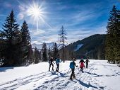 Group Of Adults Snowshoeing Thruogh A Forest On Snowy Plateau Kaiserau With Mountain Rottenmanner Ta poster