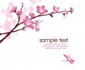 card with stylized cherry blossom and text