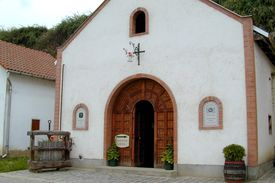 foto of tokay wine  - In Hungary Tokay is famous for making wines - JPG
