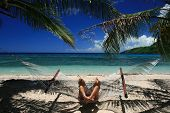 Relaxing Hammock In Fiji Islands
