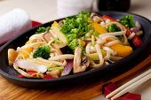 Udon with vegetables,  japanese cuisine