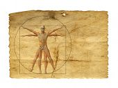 Concept or conceptual vitruvian human body drawing on old paper or book background as metaphor to anatomy,biology,Leonardo,classic,anatomical,circle,symbol ,revival,proportion,skeleton or manuscript