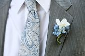 picture of boutonniere  - Detail of a Groom Wearing a Tie and Boutonniere - JPG