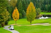 golf cart over nice green course with pond and sand bunker