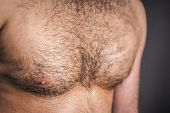 An image of a nice hairy chest
