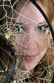 I Look Through The Web