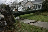 SPRINGFIELD, NJ - OCT 30: A tree lays between two homes on October 30, 2012 in Springfield, NJ. Hurr