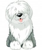Illustration of sitting funny Old English Sheepdog