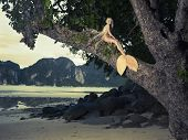 Beautiful fashionable mermaid sitting on a mighty tree on the beach