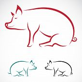foto of piglet  - Vector image of an pig on white background - JPG